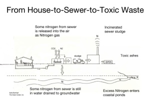 House-Sewer-Waste