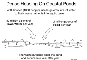Coastal Pond Pollution