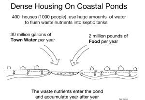 Coastal Pond Pollution
